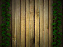 Herbal and wooden background Royalty Free Stock Images