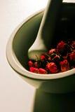 Herbalist Fotografia de Stock Royalty Free