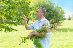 herbalist Fotografie Stock