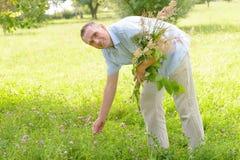 Herbalist Stock Photography
