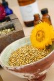 Herbalists-Bienen-Blütenstaub Stockbilder