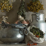 Herbals Photographie stock