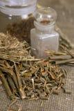 Herbals asciutti, erbe medicinali differenti - corteccia del salice medica Fotografia Stock