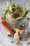 Herbals organique photo stock