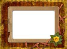 Herbario de flores y de hojas Imagen de archivo libre de regalías