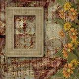 Herbario de flores y de hojas Imágenes de archivo libres de regalías
