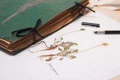 Herbarios viejos y nuevos, colección de especímenes secados de la planta Fotografía de archivo