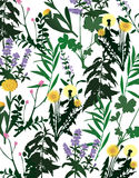 Herbarium   Lizenzfreie Stockfotos