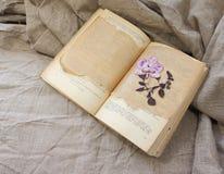 Herbarium in the book. Stock Photo