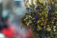 Herbarium bouquet close up stock photo