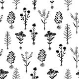 Herbarium flowers with roots, seamless pattern Stock Photo