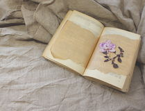 Herbarium in the open book Royalty Free Stock Photo