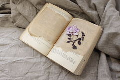 Herbarium in the open book Stock Photography