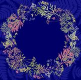 Herbarium with wildflowers, branches, leaves in a circle. Botany on a blue background, greeting card, wreath royalty free illustration