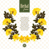 Herbarium wreath of natural yellow flowers Royalty Free Stock Photography