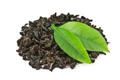 herbata Fotografia Stock