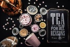 Herbata dla wszystko rozumuje Fotografia Royalty Free