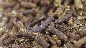 Herbata fermentuj? zbiory wideo