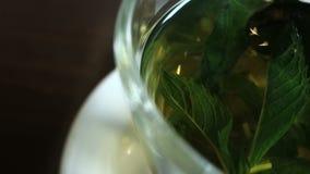 herbata miętowa zbiory