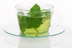 herbata miętowa obraz royalty free