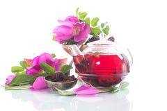 Herbata robić od różanych bioder z mennicą fotografia royalty free