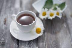 Herbata w bia?ej fili?ance na drewnianym stole Stokrotki na stole fotografia royalty free