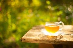 Herbata w pięknej filiżance Zdjęcia Royalty Free