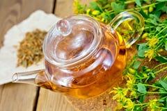Herbata z świeży i suchy tutsan w szklanym teapot Fotografia Royalty Free