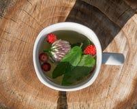 Herbata z mennicą i truskawkami w białej filiżance Fotografia Royalty Free