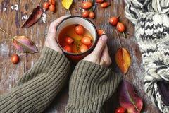 Herbata z rosehips Zdjęcia Stock
