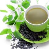 Herbata obraz royalty free