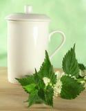 herbata ziołowa Fotografia Stock