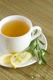 herbata ziołowa Fotografia Royalty Free