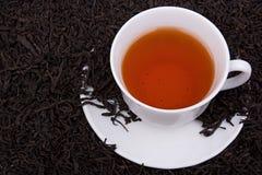 Herbaty liść wokoło Filiżanki herbata obraz stock
