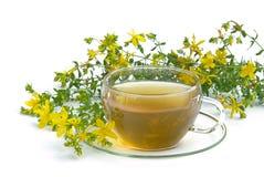 Herbaty St Johns wort 03 Zdjęcia Royalty Free