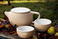 Herbaty teapot ustalona filiżanka biała herbata Zdjęcia Royalty Free