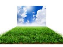 herbe 3D avec le ciel d'isolement Images stock