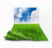 herbe 3D avec le fond de ciel au-dessus du blanc Photographie stock