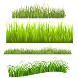 Herbe Photo stock