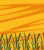 Herbe abstraite de soleil Images libres de droits