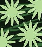 Herbe abstraite de soleil Photo stock