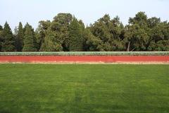 Herbe, arbres et murs Image stock