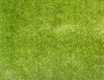 Herbe artificielle Photo stock