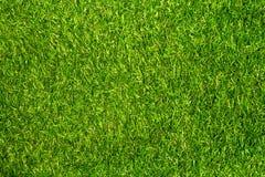 herbe artificielle verte Image libre de droits