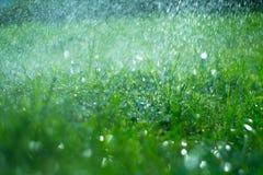Herbe avec des baisses de pluie Pelouse de arrosage Pluie Le fond brouillé d'herbe verte avec de l'eau laisse tomber le plan rapp photos stock