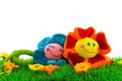 Herbe avec des fleurs photographie stock libre de droits