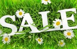 Herbe avec des fleurs et la vente blanche des textes Photos stock