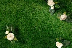 Herbe avec des roses Photo libre de droits