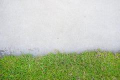 Herbe avec le ciment Photo stock
