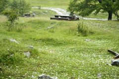 Herbe couverte dans des boules de glace après tempête de grêle Photos libres de droits